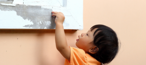 Children's Lead Screening and Abatement