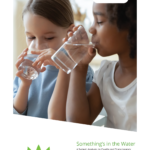 Image from:Allegheny County Water System Lead Report - April 2021